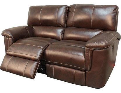 Picture of Hitchcock Cigar Leather Loveseat